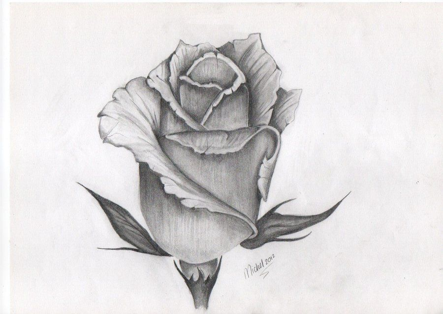 Tattoo Design Of Rose Bud Rose Bud Tattoo Roses Drawing Rose Drawing Tattoo