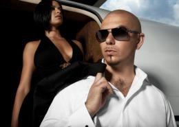 Pitbull Pitbull Rapper Pitbulls Pitbull Photos