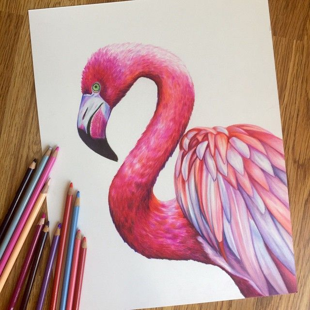 красивые рисунки карандашом цветным простые несколько раз