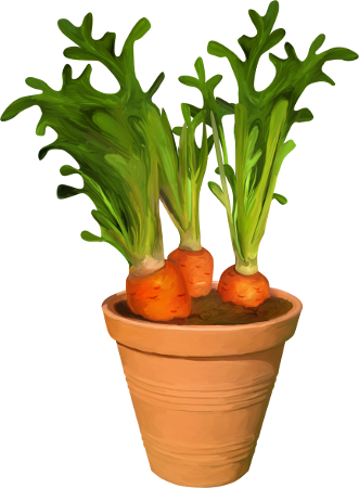 legumes,tubes