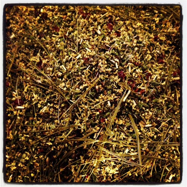 Fever Break Cold and Flu Tea Blend with Maine White Pine Needles and Wild Rose Hips.