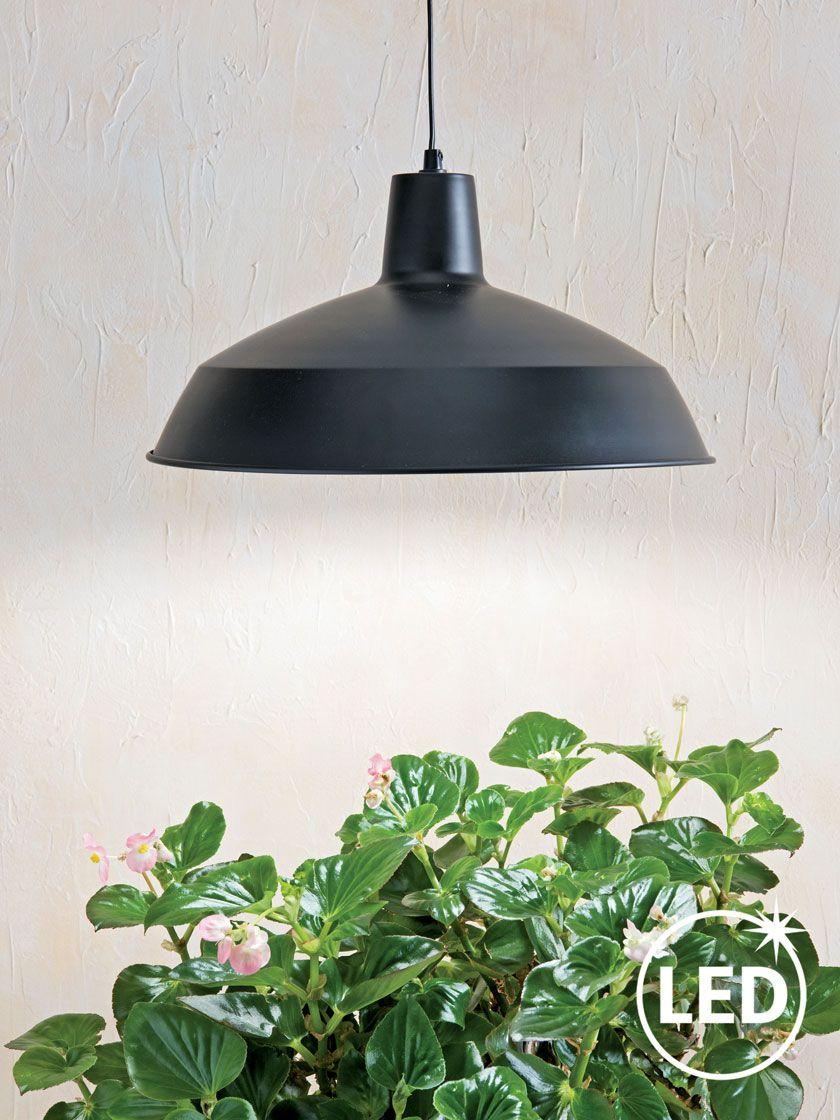 Barnyard Pendant Led Plant Light Gardener S Supply Led 400 x 300