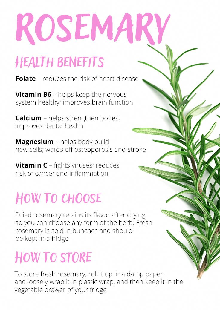 Rosemary Rosemary Health Benefits Health Benefits Anti Cancer