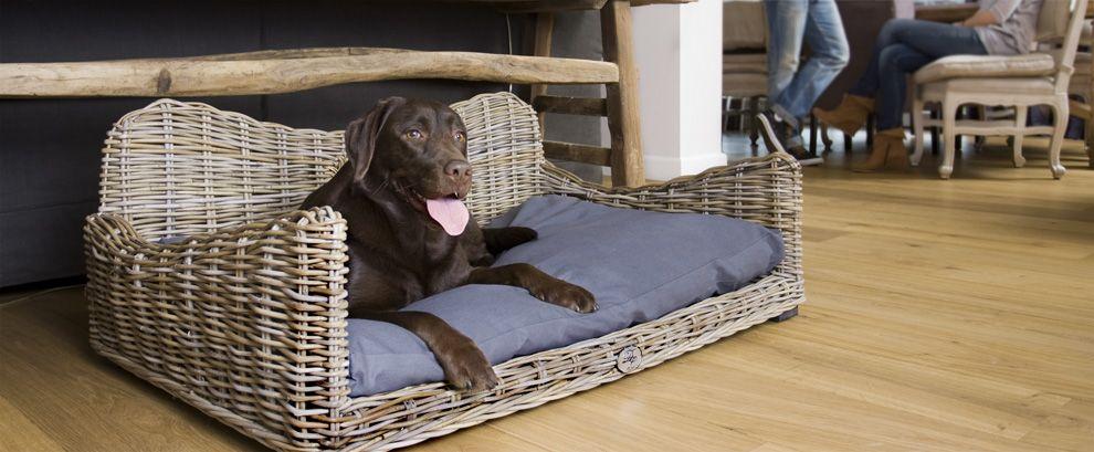 Dieses Hundebett aus Rattan ist ein ganz besonderes Geschenk, für glückliche Hunde und zufriedene Herrchen.  http://www.trendyhaustiershop.de/kubu-rattan-hundesofa-my-favourite-designed-by-lotte