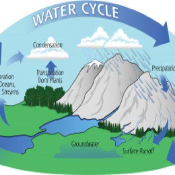 Water Cycle Webquest Water Cycle Science Fair Homeschool Science