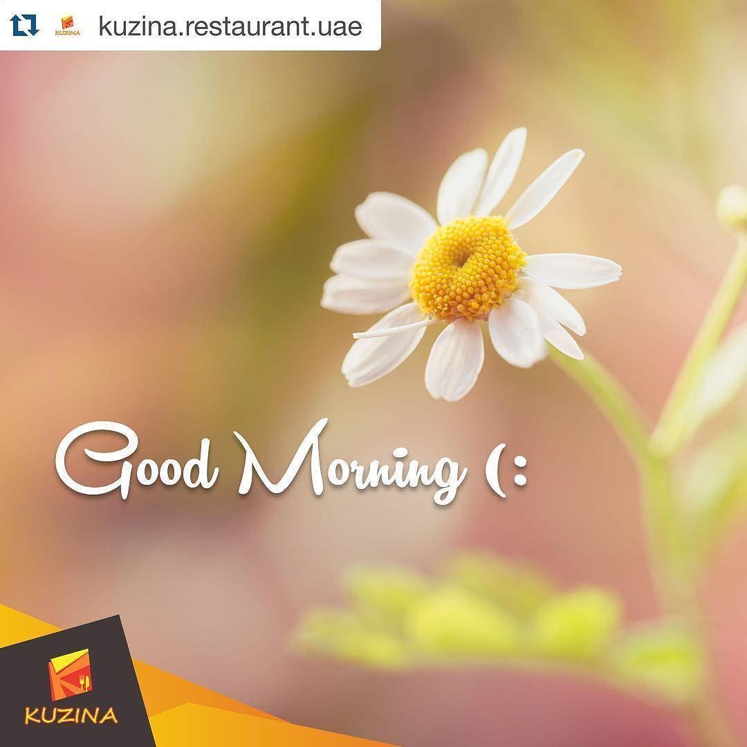 #Repost @kuzina.restaurant.uae with @repostapp.  Good Morning  #goodmorning #kuzina #restaurant #feelhome #uae #abudhabi #inabudhabi #myabudhabi #صباح_الخير #يسعد_صباحكم #صباح_الورد #صباحكم  by vitajuice.uae