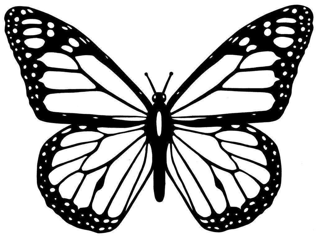 Resultado De Imagen Para Mariposas Para Dibujar Como Dibujar Mariposas Disenos De Mariposas Tatuaje De Mariposa Monarca