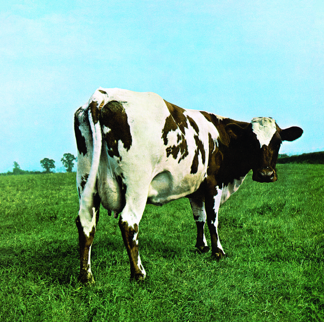 Inside Hipgnosis Iconic Covers For Pink Floyd Led Zeppelin And More With Images Pink Floyd Album Covers Pink Floyd Albums Atom Heart Mother