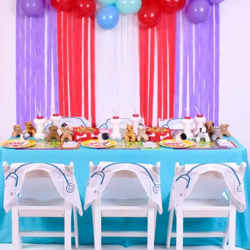 LouieKidscom A veterinarian themed birthday party for kids with