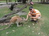 Friendly Roo