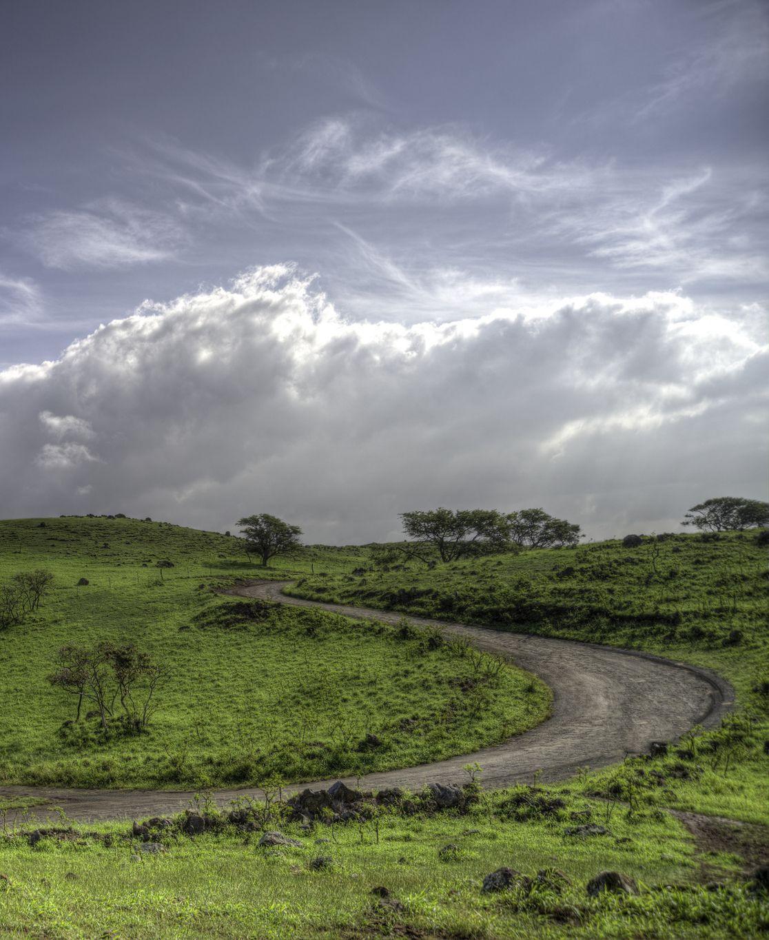 The back way to Hana, Maui