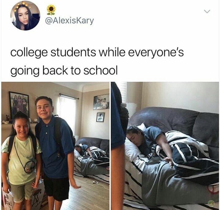 50 Fresh Memes Guaranteed To Make Your Day Funny College Memes College Memes College Life Humor