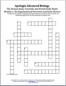 Crossword puzzles and flashcards for vocabulary words in apologias crossword puzzles and flashcards for vocabulary words in apologias the human body general science ccuart Choice Image