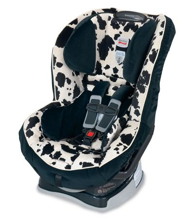 Outstanding Love The Cow Print And Best Car Seat Ever Some Day I Will Frankydiablos Diy Chair Ideas Frankydiabloscom