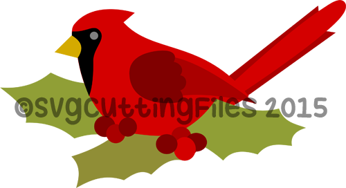 Red Robin in Holly Leaves