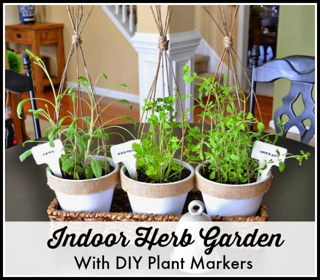 A Pretty Mini Indoor Herb Garden And Diy Plant Markers