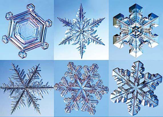 404 Not Found | Flocon de neige, Cristaux de neige, Flocons