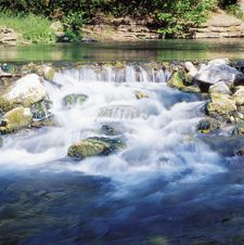 Roaring river state park mo we have been twice but for Roaring river fishing