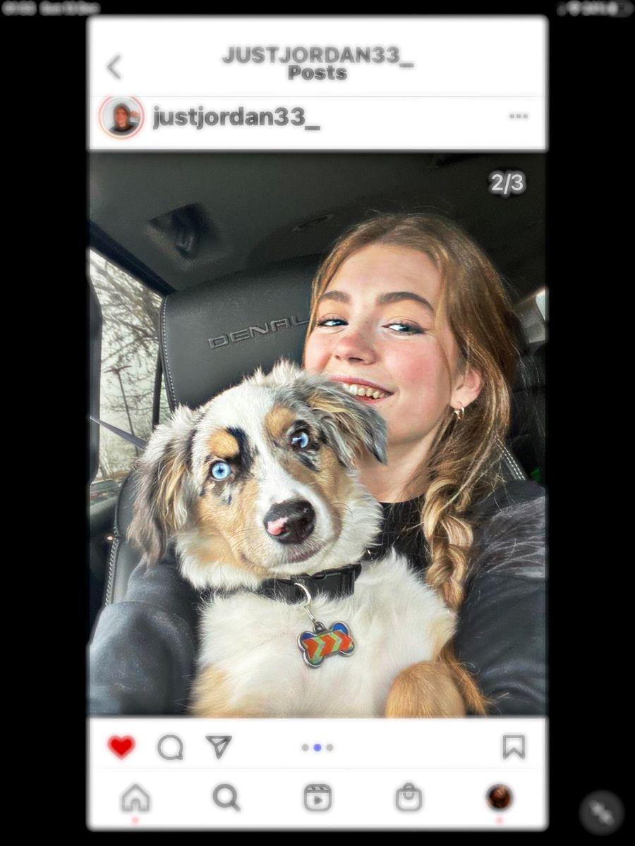Follow My Tiktok Easterleing Soon To Be Addvsc Cute Youtubers Just Jordan 33 Cute Animals