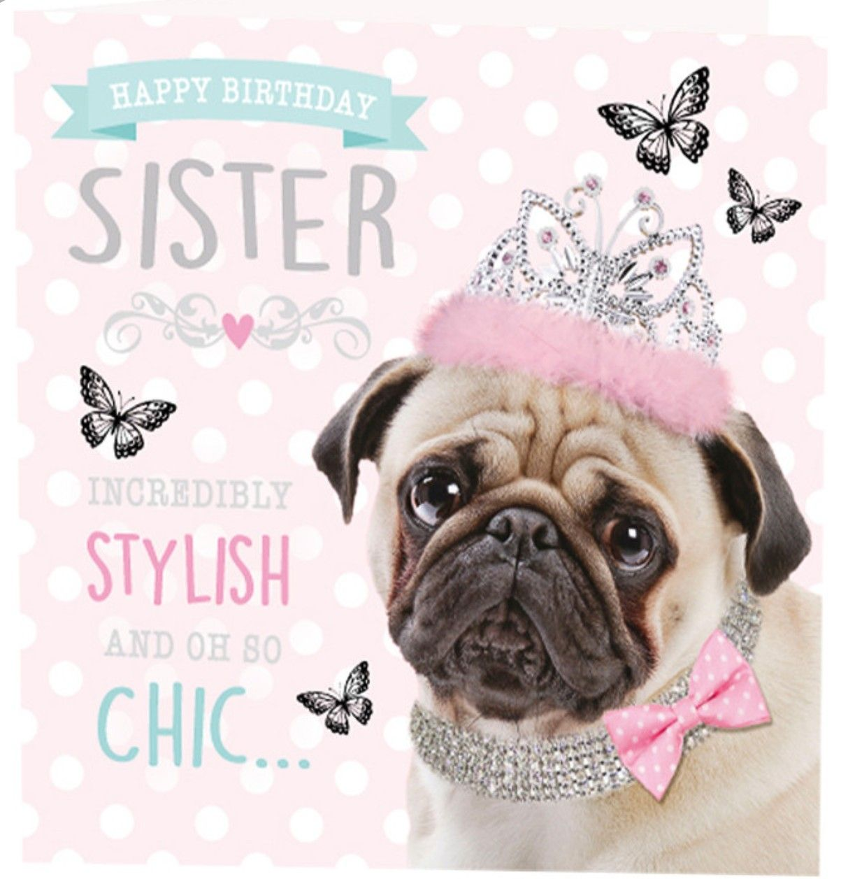 Birthday Pug Sister Birthday Quotes Sister Quotes Funny Happy