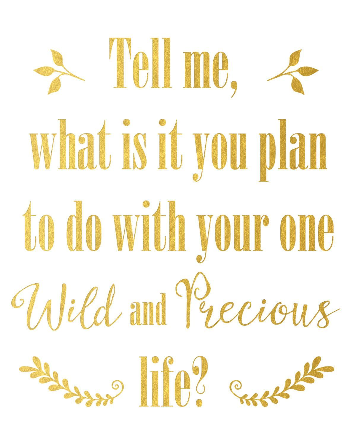 Profound Quotes About Life What Is It You Plan To Do With Your One Wild And Precious Life