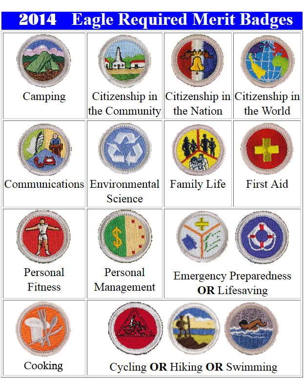 Image result for pictures of eagle merit badges