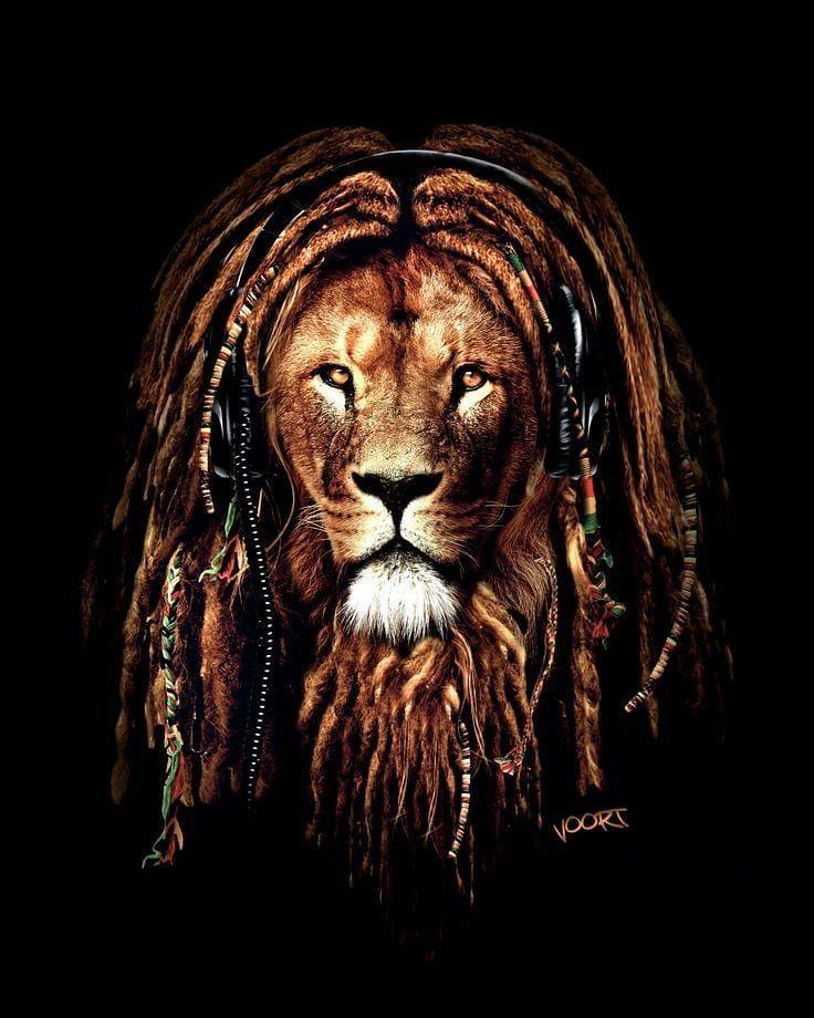 картинки льва с дредами москве