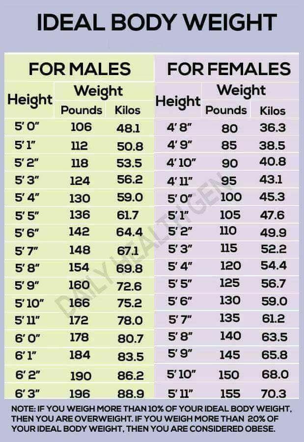 Ideal body weight chart health fitness pinterest