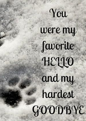 You Were My Favorite Hello And My Hardest Goodbye Notebook Journal Hello Goodbye Grief Petloss Paws Sympathymessages Dog Poems Dog Quotes Animal Quotes