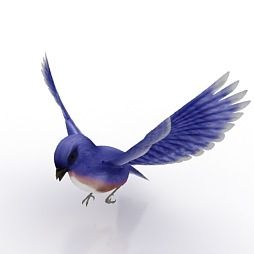 blue bird 3d model 58 best free 3d bird models