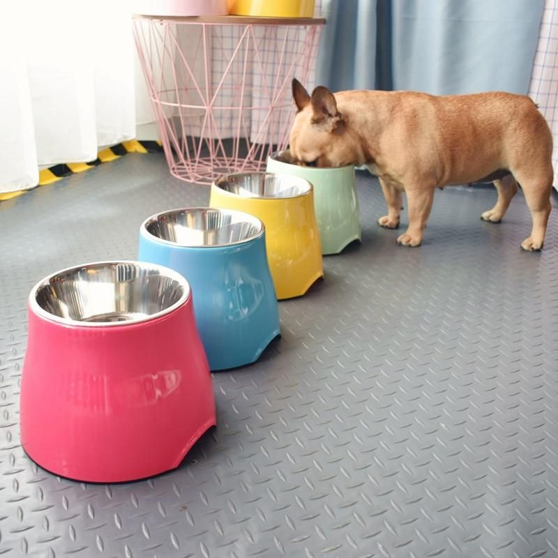 Designer french bulldog high foot bowl in 2020 with