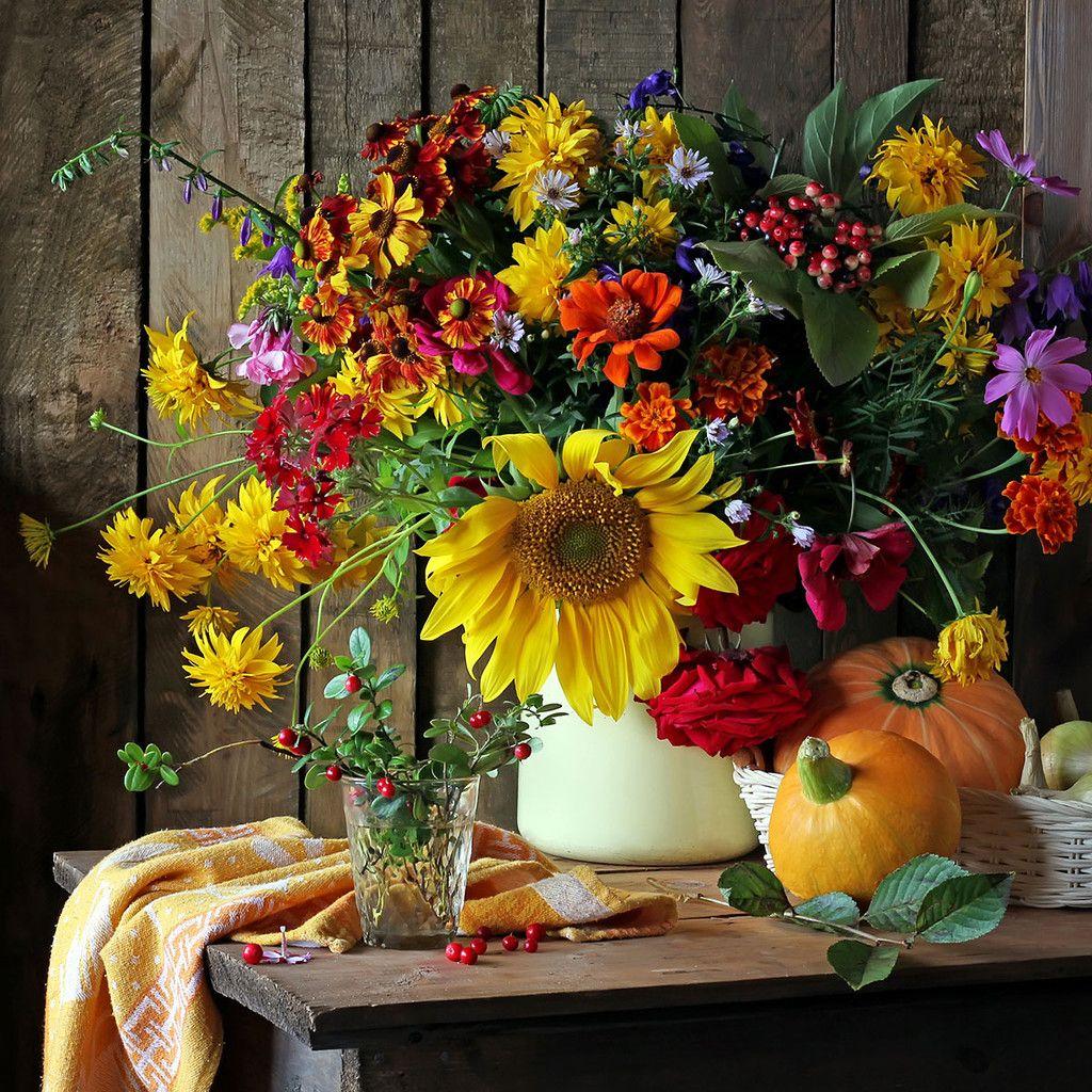 Рождеством, красивые картинки с осенними цветами для вдохновения и хорошего настроения