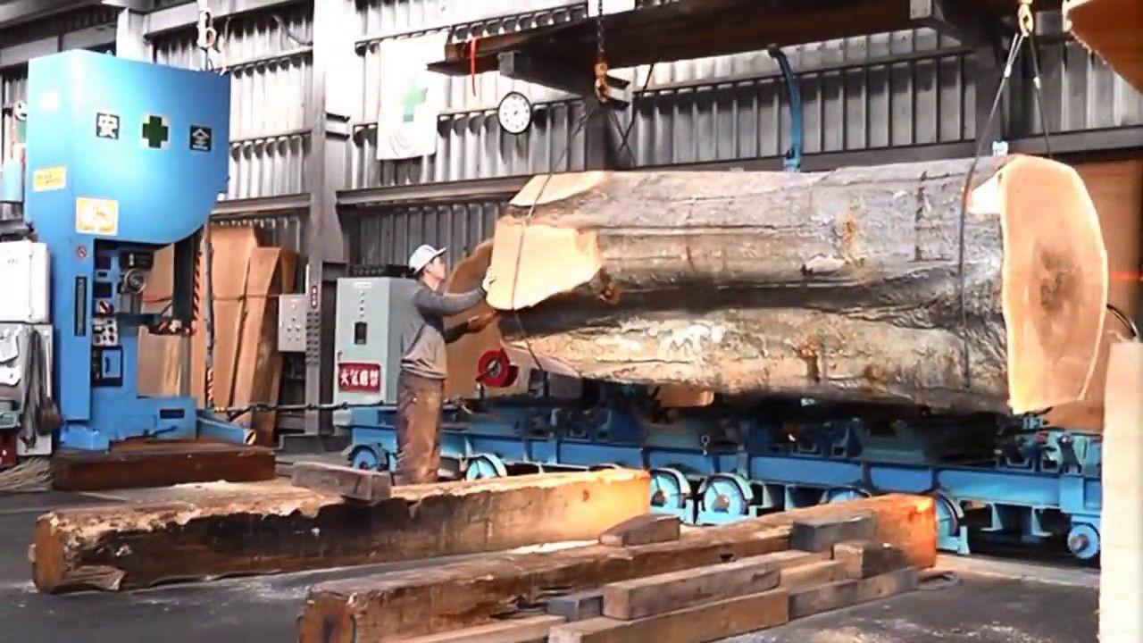 Inside A Modern Sawmill In Japan Visit Wood Processing Plants Sawmill Wood Timber Framing