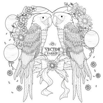 coloring pages print lovely parrot coloring page in exquisite style