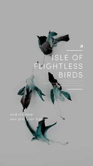 Wallpaper Set No  398   Wallpaper   Pinterest   Flightless bird     Isle of Flightless Birds   Twenty One Pilots Lyrics  Self Titled  Aesthetics    Graphic Design   Photography by KAESPO  Top Quotes Twenty One  Pilots