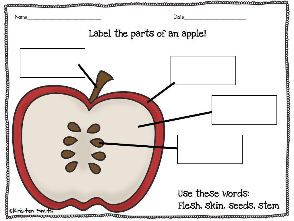 Label An Apple