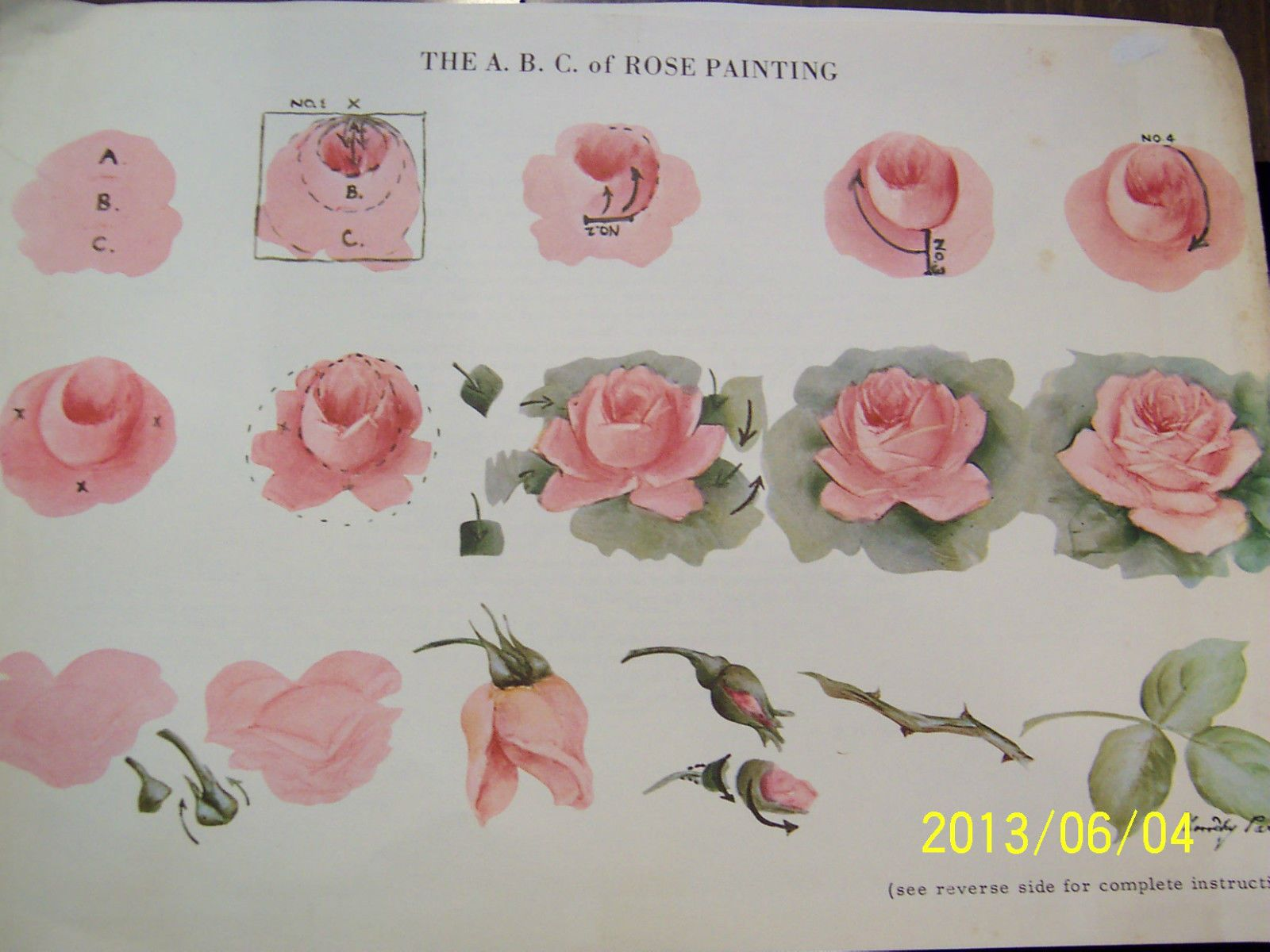China Painting Study Abc Rose Study Dorothy Park Step By Step 3