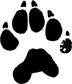 Wolverine Animal Footprints Wolverine Animal Wolverine