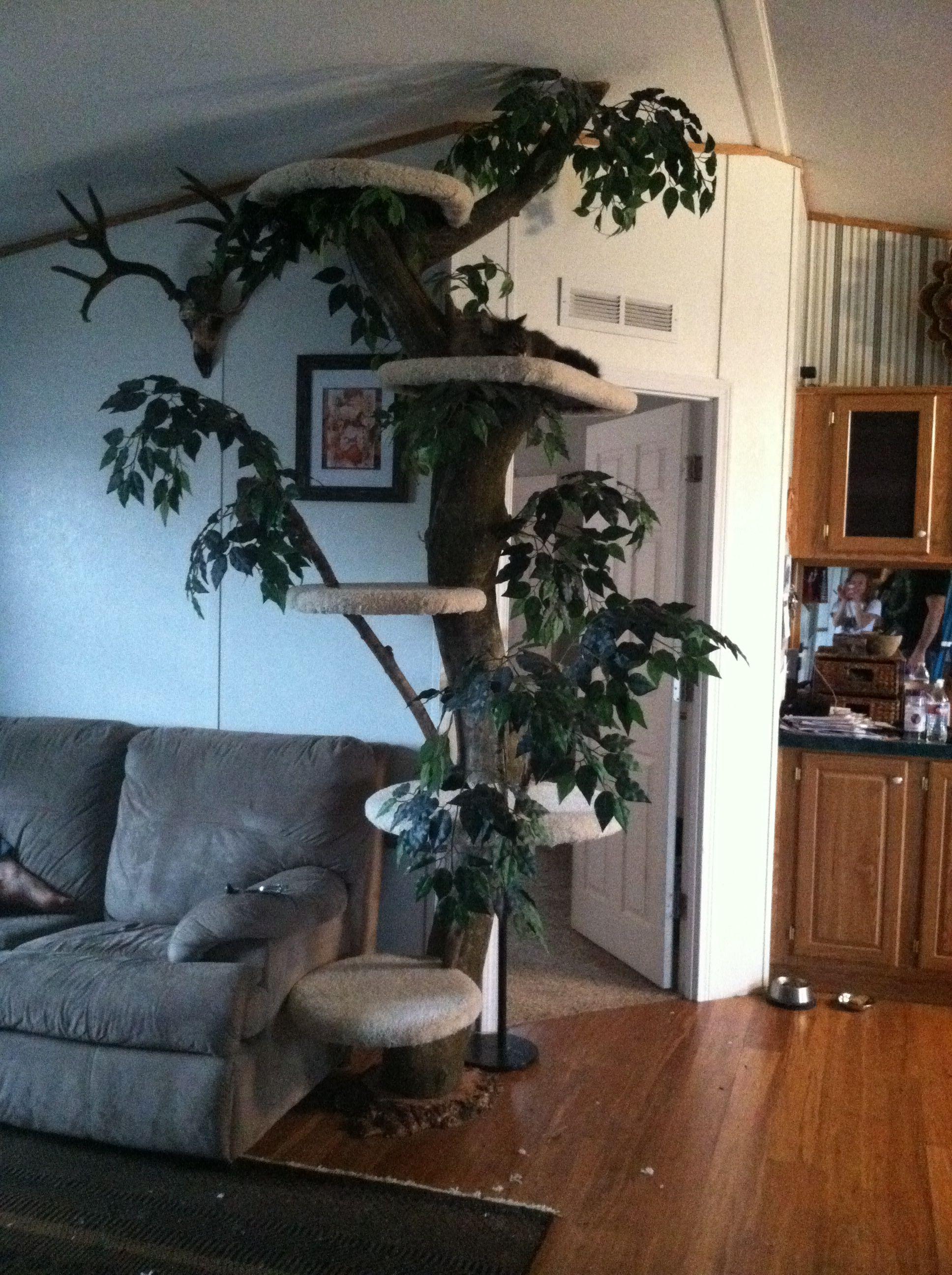 Cat tree cat tree diy tree
