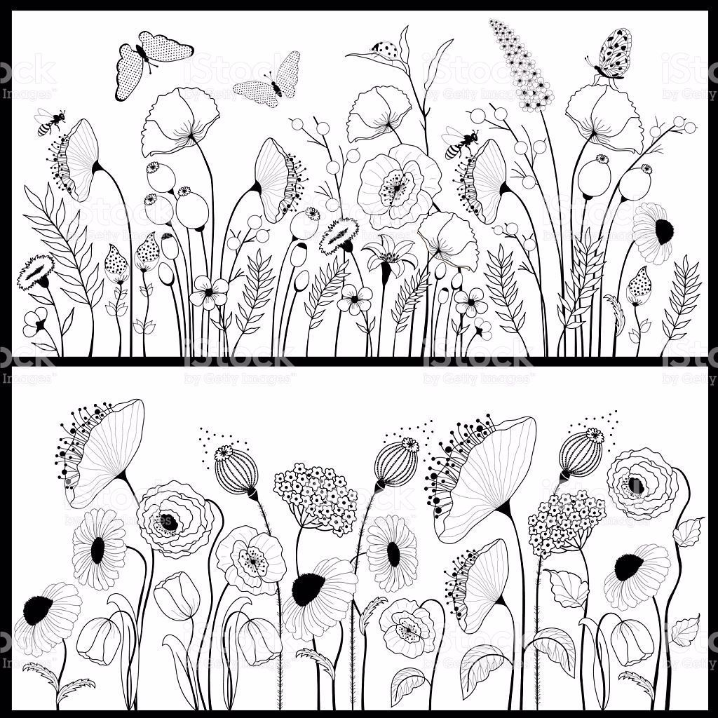 Ein Satz Von Floral Banner In Weiss Und Schwarz Lizenzfreies Vektor