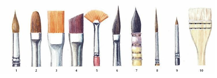Guide To Watercolor Paint Brushes Watercolour Painting