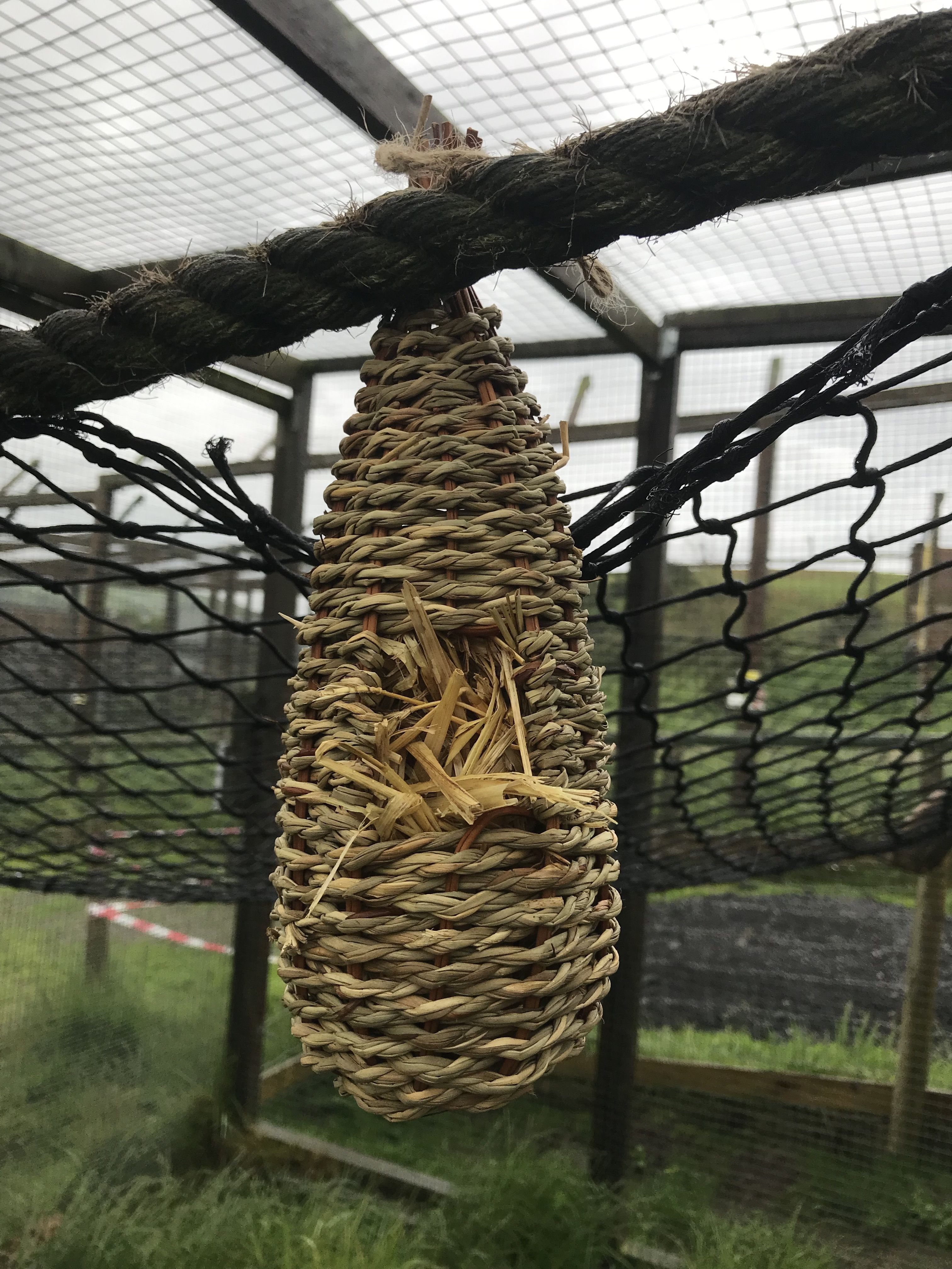 Woven bird nests had food inside and the openings blocked