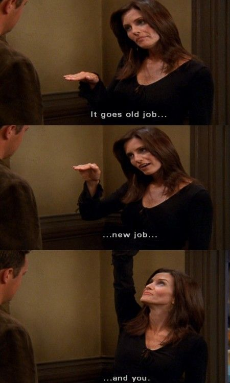 Chandler and Monica - 9x03