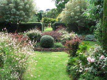 Carolyn Robinson Garden Design Garden Design Native Garden Outdoor Landscaping