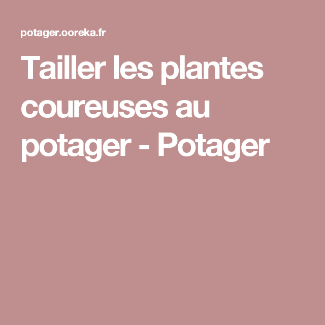 Tailler les plantes coureuses au potager - Potager