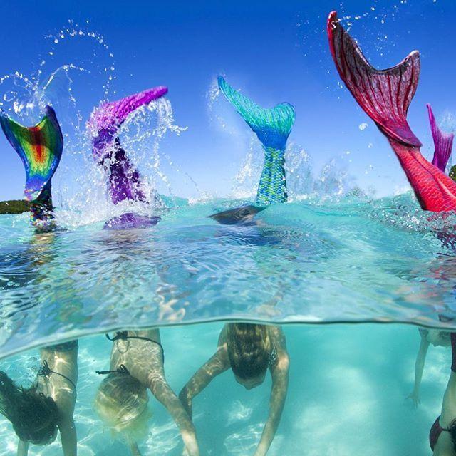 We Flip For Fin Fun Mermaid Tails The Original Real Swim Able Mermaid Tail Guaranteed To Make