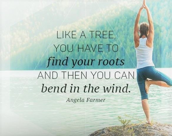 Like a tree you have to find your roots, and then you can bend in the wind. #roots #tree #bend #yoga #yogi #namaste #spiritual #spirituality #lifepurpose #purposeoflife #livethelifeyoulove #powerthoughtsmeditationclub @powerthoughtsmeditationclub