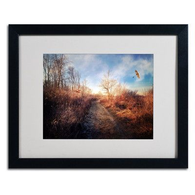 "Trademark Art ""Blast of Wind"" by Philippe Sainte-Laudy Framed Photographic Print"
