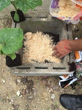 une astuce de jardinage pour conomiser de l 39 eau dans la. Black Bedroom Furniture Sets. Home Design Ideas