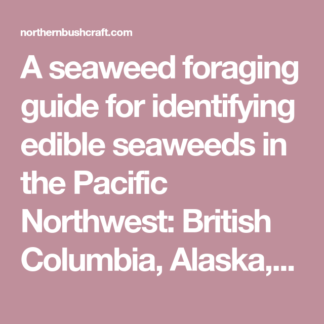 The Science Of Seaweeds Manual Guide